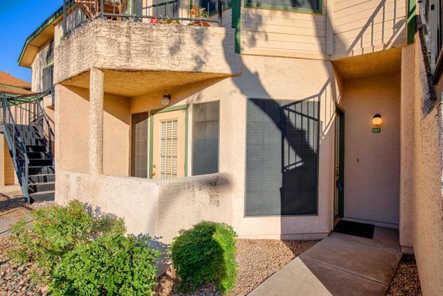 8888 N 47TH Avenue #137, Glendale, AZ 85302 (MLS #5870619) :: Santizo Realty Group