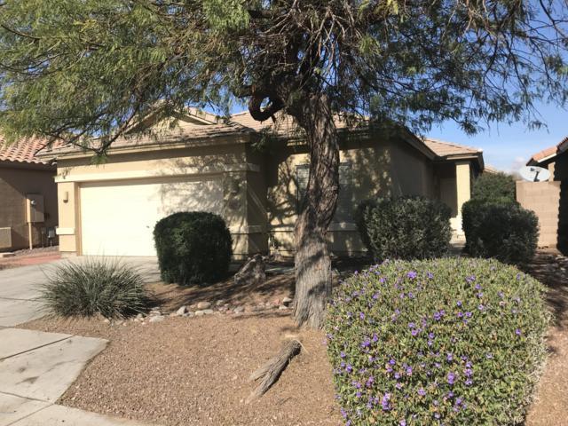 12522 W Campina Drive, Litchfield Park, AZ 85340 (MLS #5870660) :: The Sweet Group