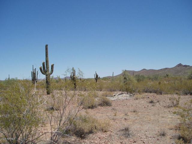 32423 W Olesen Road, Wittmann, AZ 85361 (MLS #5870667) :: Brett Tanner Home Selling Team
