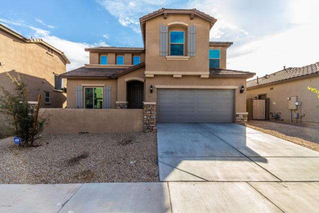 17853 W Sherman Street, Goodyear, AZ 85338 (MLS #5870692) :: CC & Co. Real Estate Team