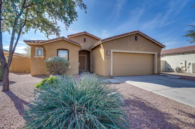 3693 E Jaguar Avenue, Gilbert, AZ 85298 (MLS #5870699) :: Team Wilson Real Estate