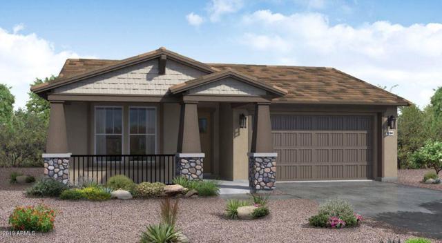 29550 N 113TH Lane, Peoria, AZ 85383 (MLS #5870716) :: Santizo Realty Group