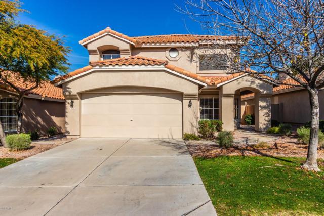6616 E Saddleback Street, Mesa, AZ 85215 (MLS #5870749) :: The Daniel Montez Real Estate Group