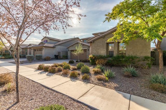 10709 E Vivid Avenue, Mesa, AZ 85212 (MLS #5870750) :: The Daniel Montez Real Estate Group