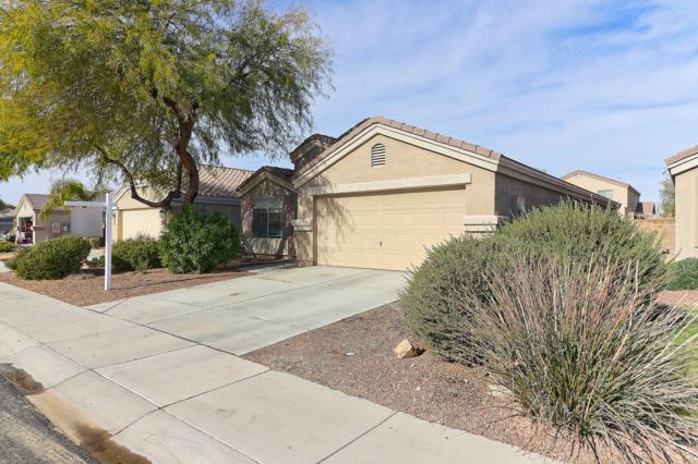 12022 W Camino Vivaz, Sun City, AZ 85373 (MLS #5870757) :: The Daniel Montez Real Estate Group