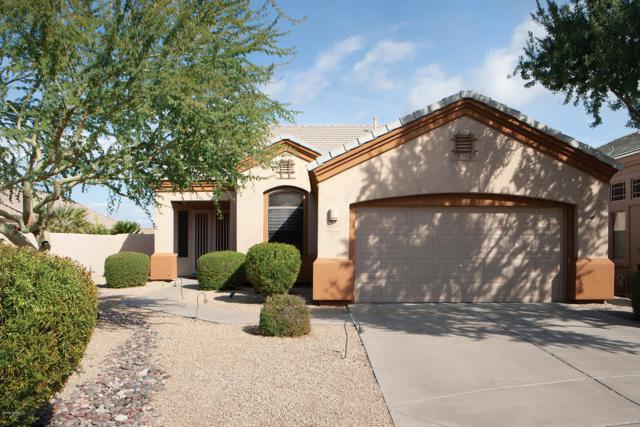 14425 N Buckthorn Court, Fountain Hills, AZ 85268 (MLS #5870762) :: The Daniel Montez Real Estate Group