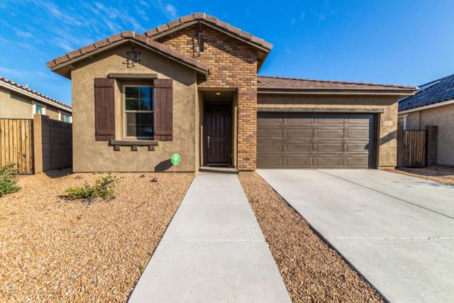 12044 W Desert Sun Lane, Peoria, AZ 85383 (MLS #5870764) :: The Laughton Team