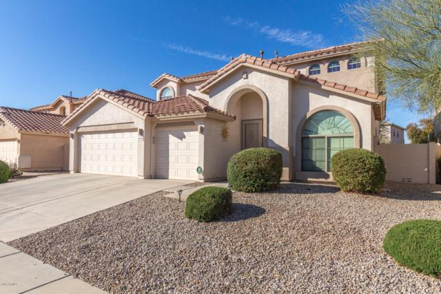 19956 N Santa Cruz Drive, Maricopa, AZ 85138 (MLS #5870772) :: The Daniel Montez Real Estate Group