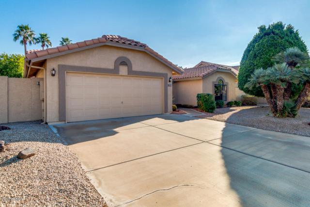 19703 N 92ND Avenue, Peoria, AZ 85382 (MLS #5870776) :: The Laughton Team