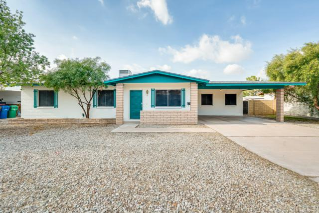 658 S Sierra, Mesa, AZ 85204 (MLS #5870793) :: The W Group
