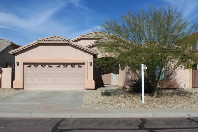 10910 W Davis Lane, Avondale, AZ 85323 (MLS #5870794) :: The Sweet Group