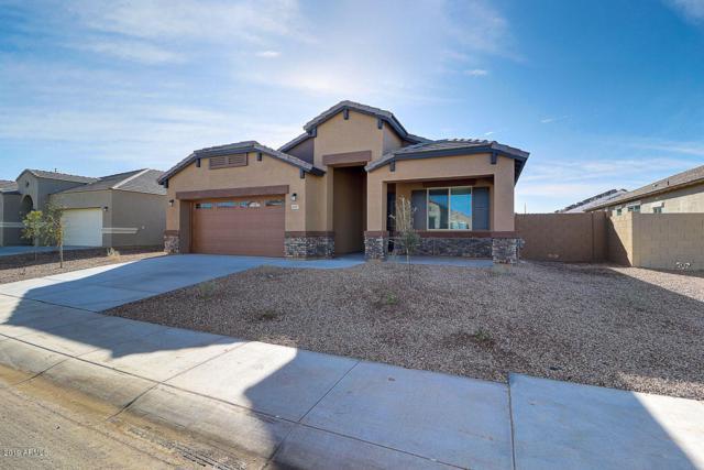 40987 W Crane Drive, Maricopa, AZ 85138 (MLS #5870820) :: Revelation Real Estate