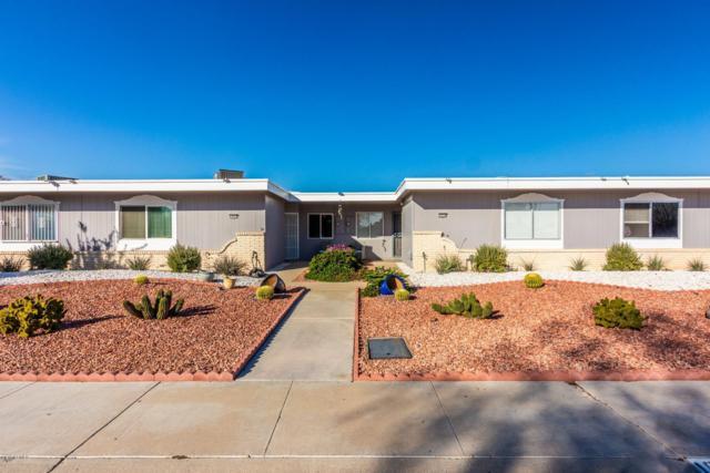 10238 W Campana Drive, Sun City, AZ 85351 (MLS #5870831) :: The Daniel Montez Real Estate Group