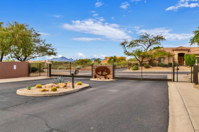 11922 N 123RD Way, Scottsdale, AZ 85259 (MLS #5870837) :: Santizo Realty Group