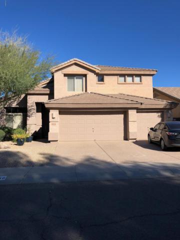 2511 W Bent Tree Drive, Phoenix, AZ 85085 (MLS #5870840) :: Santizo Realty Group