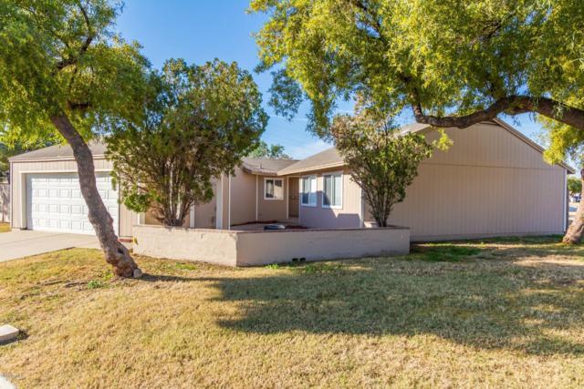 7024 S 43RD Place S, Phoenix, AZ 85042 (MLS #5870859) :: Santizo Realty Group