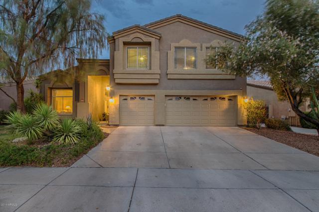 713 S Canfield, Mesa, AZ 85208 (MLS #5870860) :: Santizo Realty Group