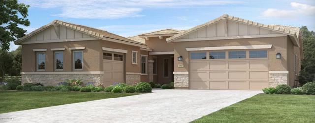 9734 E Thornbush Avenue, Mesa, AZ 85212 (MLS #5870890) :: The Daniel Montez Real Estate Group