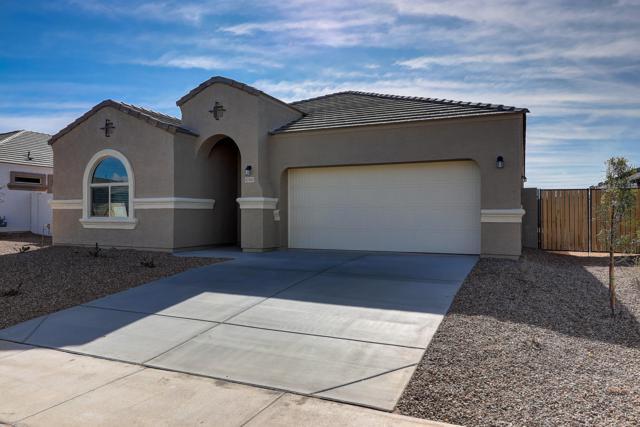 40969 W Crane Drive, Maricopa, AZ 85138 (MLS #5870927) :: Yost Realty Group at RE/MAX Casa Grande