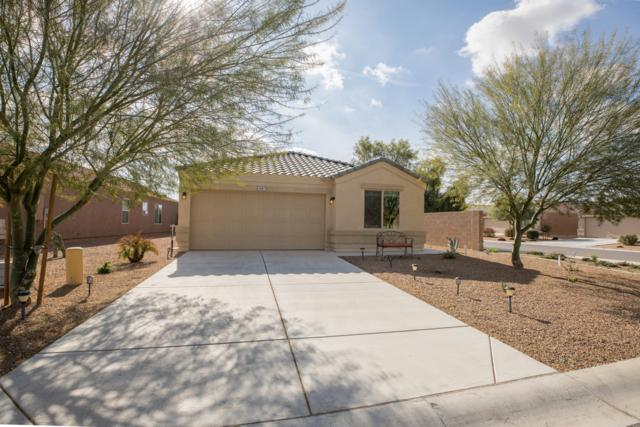 4587 E Tiger Eye Road, San Tan Valley, AZ 85143 (MLS #5870937) :: RE/MAX Excalibur