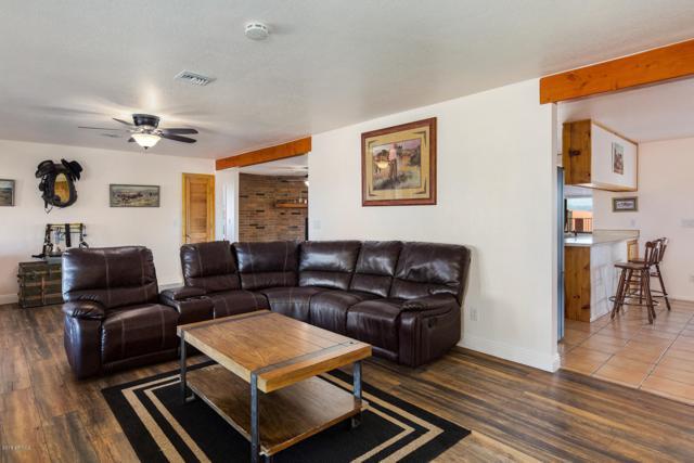 7100 N Nelson Quihuis Road, Marana, AZ 85653 (MLS #5870943) :: Yost Realty Group at RE/MAX Casa Grande