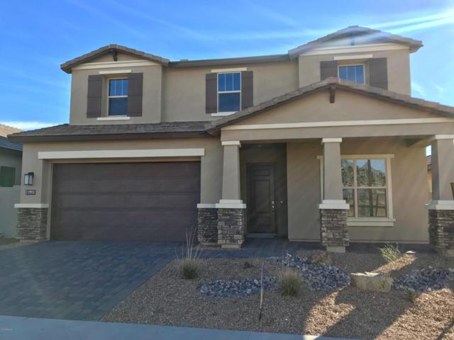 17913 N 66TH Way, Phoenix, AZ 85054 (MLS #5870949) :: Arizona 1 Real Estate Team