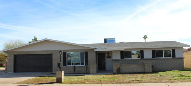 10217 N 37TH Avenue, Phoenix, AZ 85051 (MLS #5870955) :: Yost Realty Group at RE/MAX Casa Grande