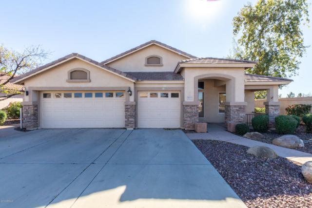 5633 E Grove Circle, Mesa, AZ 85206 (MLS #5870965) :: The Property Partners at eXp Realty