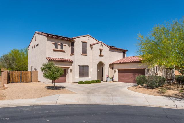 1528 W Calle Escuda, Phoenix, AZ 85085 (MLS #5870995) :: The Pete Dijkstra Team