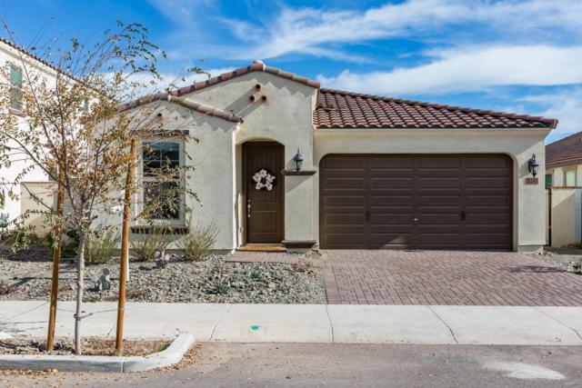 5241 S Hadron, Mesa, AZ 85212 (MLS #5870998) :: Berkshire Hathaway Home Services Arizona Properties