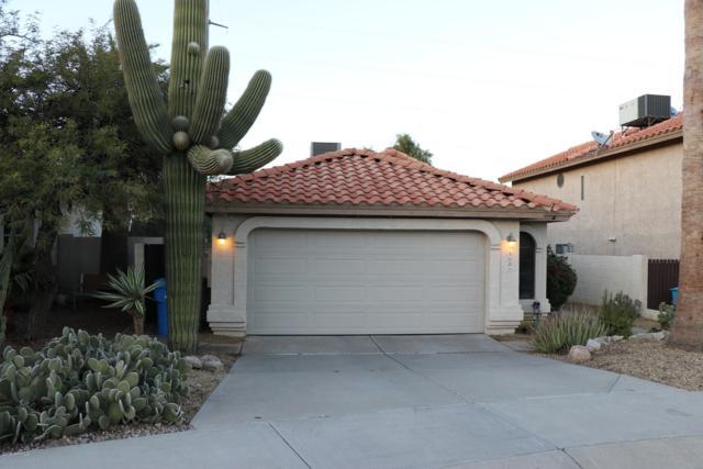 1604 E Villa Theresa Drive, Phoenix, AZ 85022 (MLS #5871000) :: Arizona 1 Real Estate Team