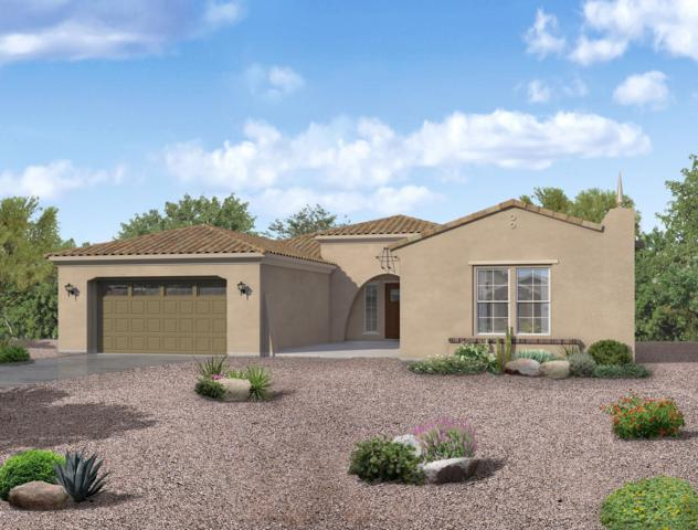 14968 S 184TH Avenue, Goodyear, AZ 85338 (MLS #5871026) :: Kortright Group - West USA Realty
