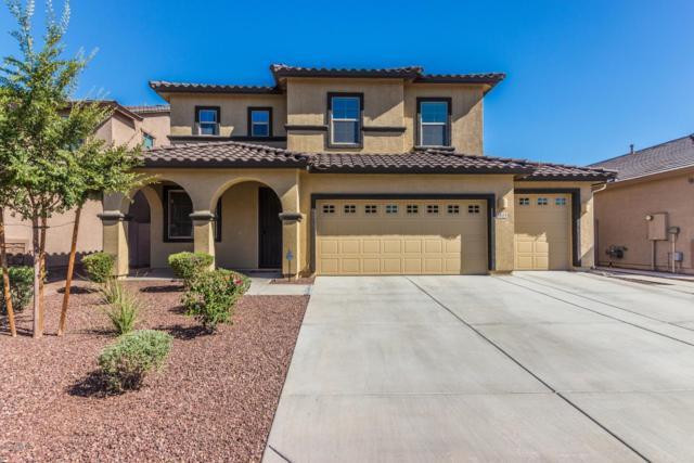 3523 E Alfalfa Drive, Gilbert, AZ 85298 (MLS #5871044) :: The Property Partners at eXp Realty