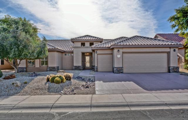 15133 W Wildfire Drive, Surprise, AZ 85374 (MLS #5871114) :: The Laughton Team