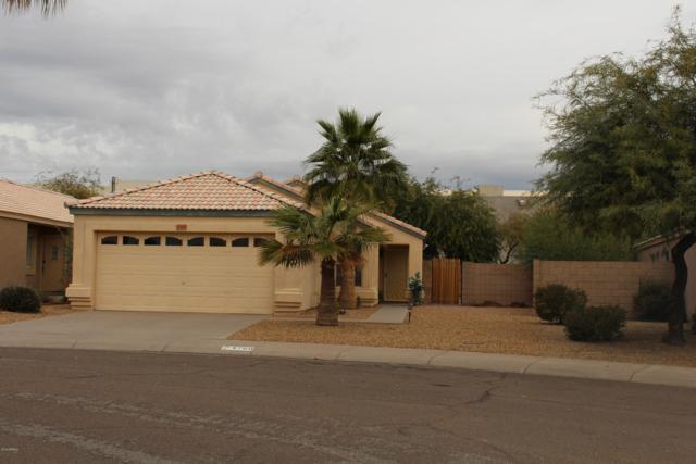 4760 E Mountain Sage Drive, Phoenix, AZ 85044 (MLS #5871153) :: Yost Realty Group at RE/MAX Casa Grande