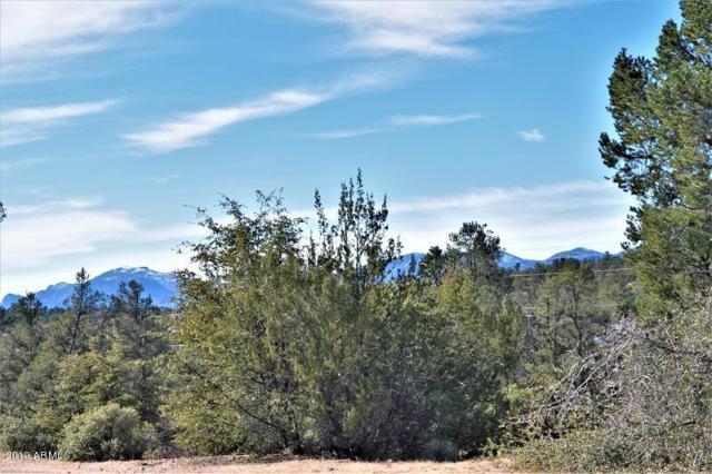 204 N Fawn Drive, Payson, AZ 85541 (MLS #5871174) :: Yost Realty Group at RE/MAX Casa Grande