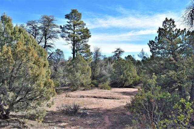 101 N Stag Point, Payson, AZ 85541 (MLS #5871175) :: Yost Realty Group at RE/MAX Casa Grande