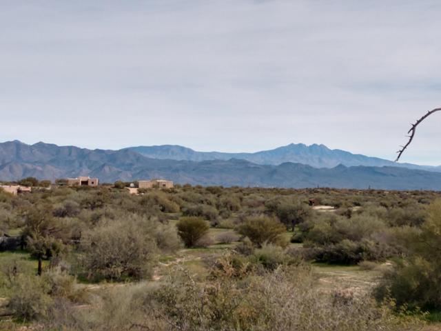 14100 E Dove Valley Road, Scottsdale, AZ 85262 (MLS #5871236) :: The Daniel Montez Real Estate Group