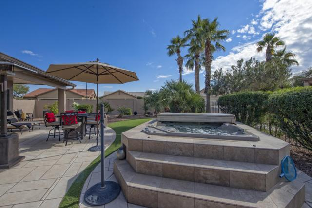 16107 W Fairmount Avenue, Goodyear, AZ 85395 (MLS #5871256) :: The W Group