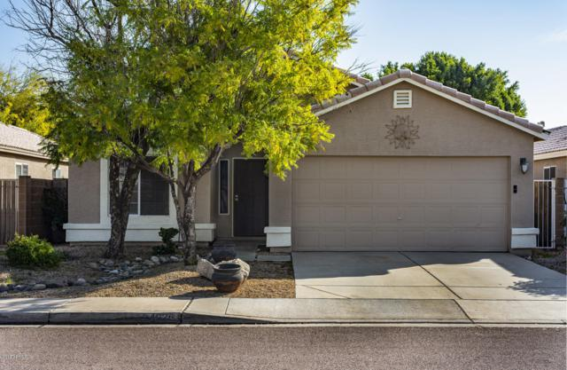 24629 N 39th Avenue, Glendale, AZ 85310 (MLS #5871258) :: Kortright Group - West USA Realty