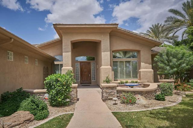 1654 W Yellowstone Way, Chandler, AZ 85248 (MLS #5871354) :: The Property Partners at eXp Realty