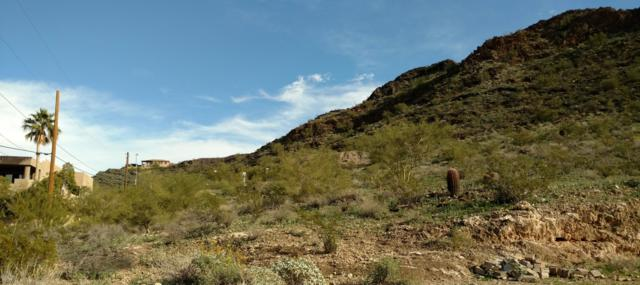 1540 E Dunlap Avenue, Phoenix, AZ 85020 (MLS #5871358) :: Yost Realty Group at RE/MAX Casa Grande