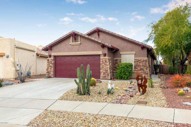 10284 E Meandering Trail Lane, Gold Canyon, AZ 85118 (MLS #5871364) :: Yost Realty Group at RE/MAX Casa Grande
