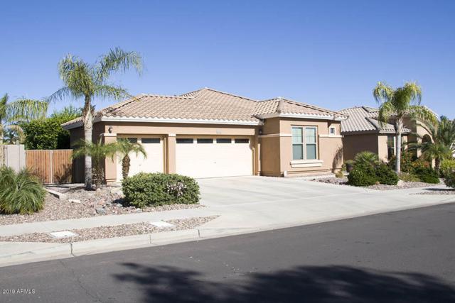 19230 W Pasadena Avenue, Litchfield Park, AZ 85340 (MLS #5871383) :: The Daniel Montez Real Estate Group