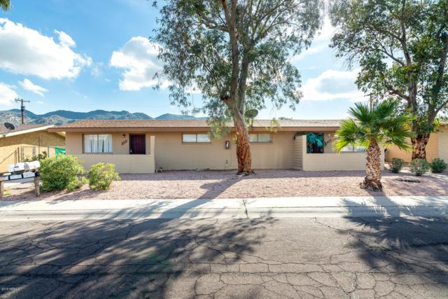 730 E Siesta Drive, Phoenix, AZ 85042 (MLS #5871389) :: Team Wilson Real Estate