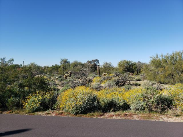 23416 N 84TH Street, Scottsdale, AZ 85255 (MLS #5871392) :: The W Group