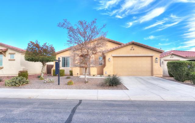 42448 W Almira Drive, Maricopa, AZ 85138 (MLS #5871395) :: Yost Realty Group at RE/MAX Casa Grande