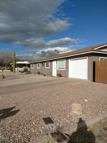 925 N 95TH Street, Mesa, AZ 85207 (MLS #5871413) :: Yost Realty Group at RE/MAX Casa Grande