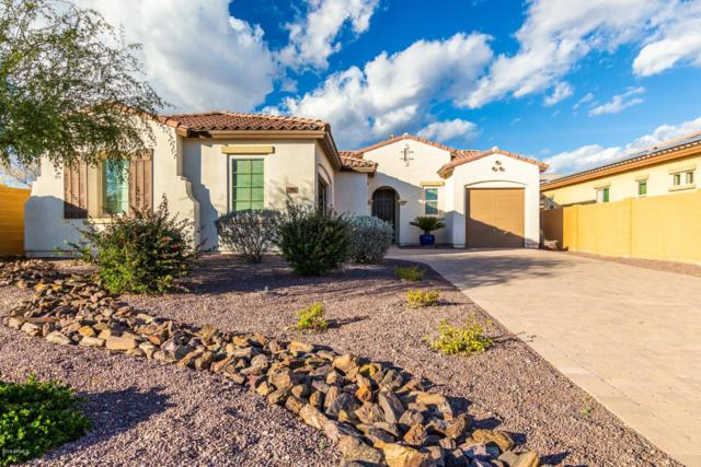 7982 W Whitehorn Trail, Peoria, AZ 85383 (MLS #5871424) :: Kortright Group - West USA Realty