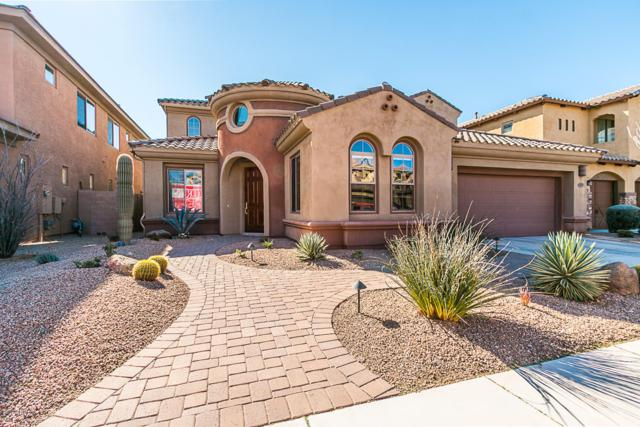 3815 E Daley Lane, Phoenix, AZ 85050 (MLS #5871488) :: RE/MAX Excalibur